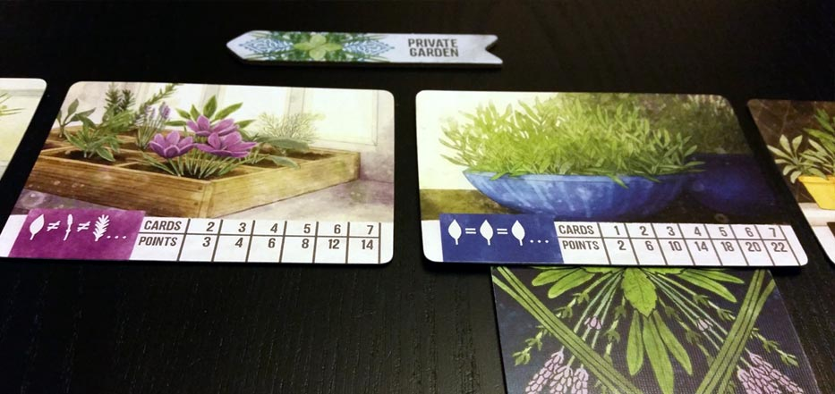 Herbaceous planters
