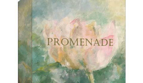 Promenade Kickstarter Preview