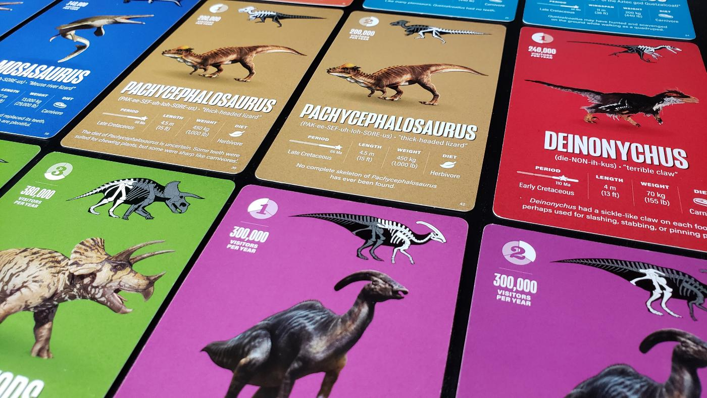 Fossil Canyon cards