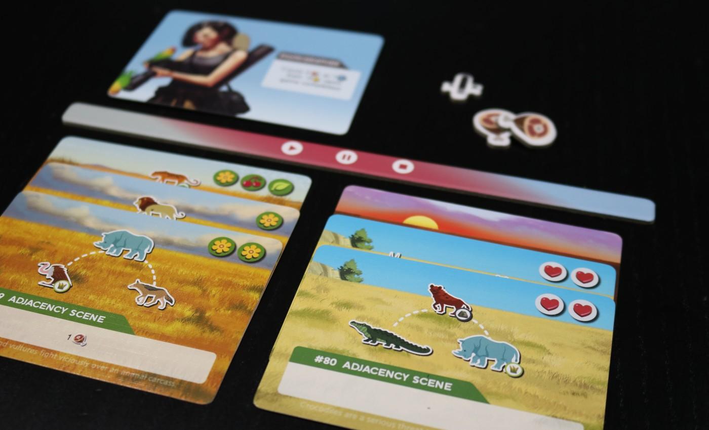 Wild: Serengeti player board